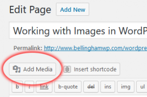 WordPress Images: Add Media From Page or Post