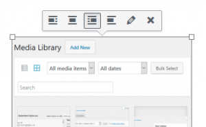 WordPress Images: Visual Options