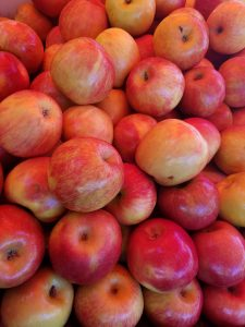Fresh Apples at the Bellingham WA Farmers Market