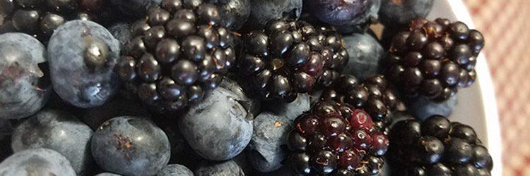 Bellingham WA Farmers Market Fresh Berries